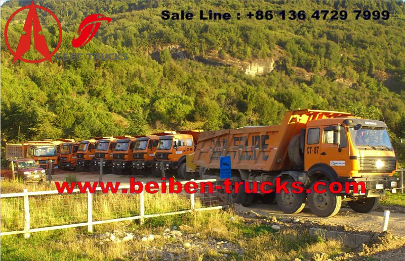 china beiben dump truck supplier for tanzania country