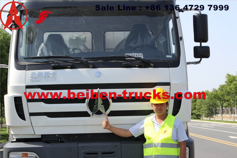 CONGO north benz dump truck for Burear veritas inspection