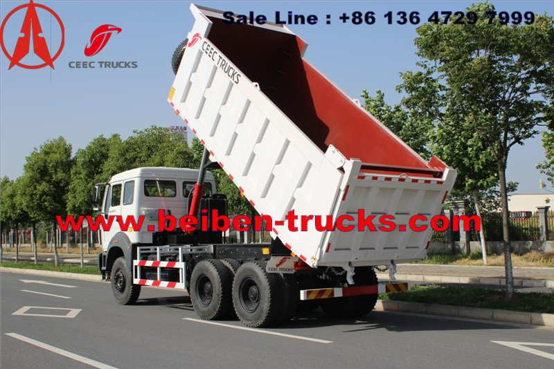 CONGO north benz dump truck for Burear veritas inspection