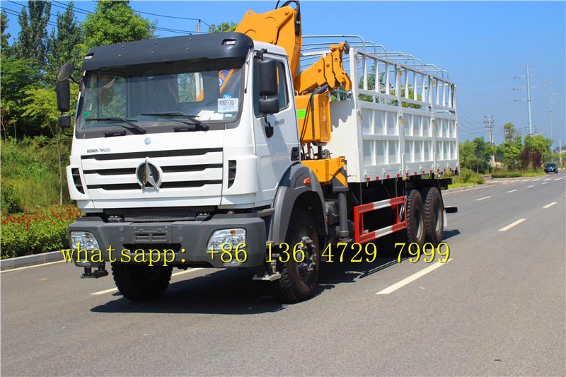 congo north benz 2638 cargo truck